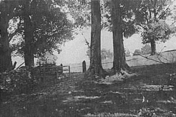 field-entrance